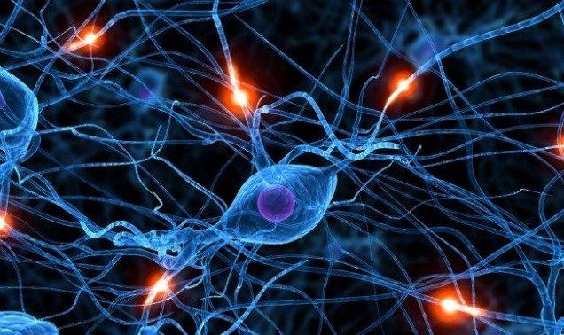 6 Приемоф нейромаркетинга для продающих сайтов